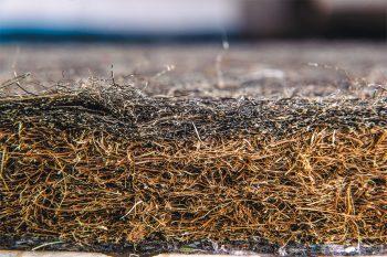 kokos koski włosie